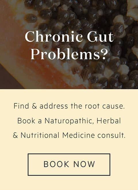 Banner advertising Lauren's Naturopathy consults to support gut health
