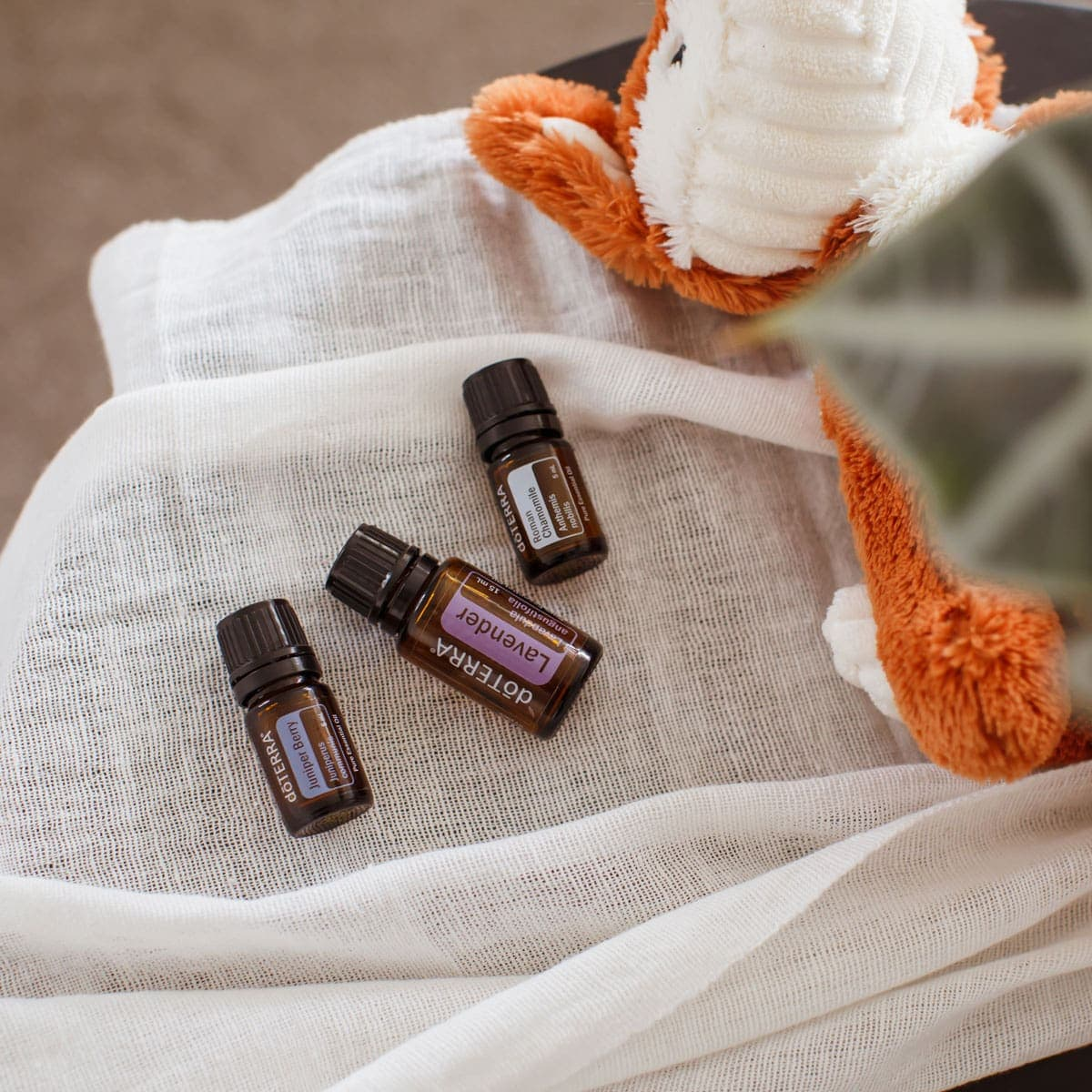Essential Oils For Kid S Sleep Support Ascension Kitchen