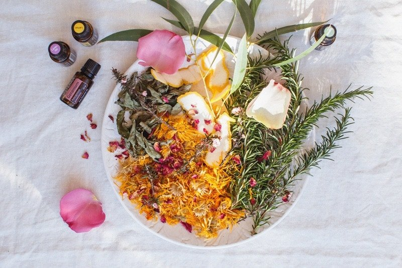 A plate of fresh and dried herbs for a facial steam for oily skin