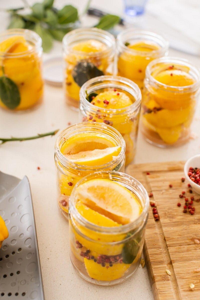 Multiple jars of preserved lemons seasoned with bay leaves and peppercorns, ready to be capped