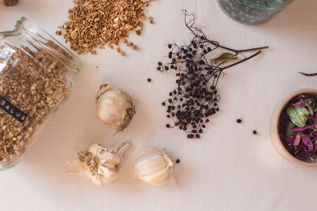 Bulbs of garlic in amongst other medicinal immune-boosting herbs
