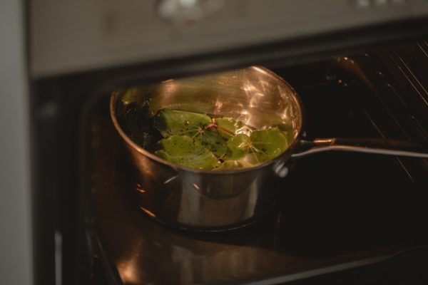 Pot with kawakawa leaves and oil inside the oven